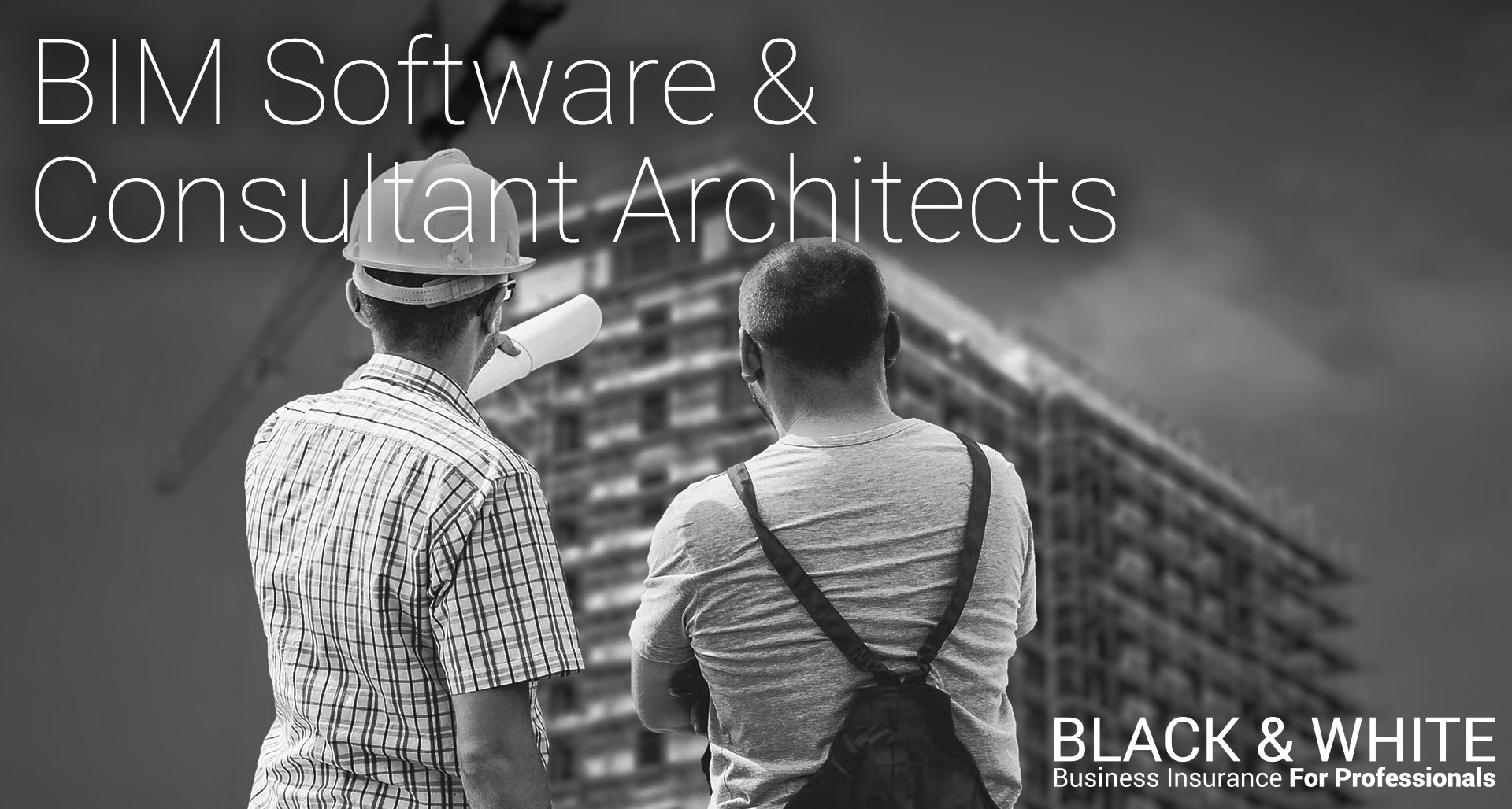 BIM Software | Black and White